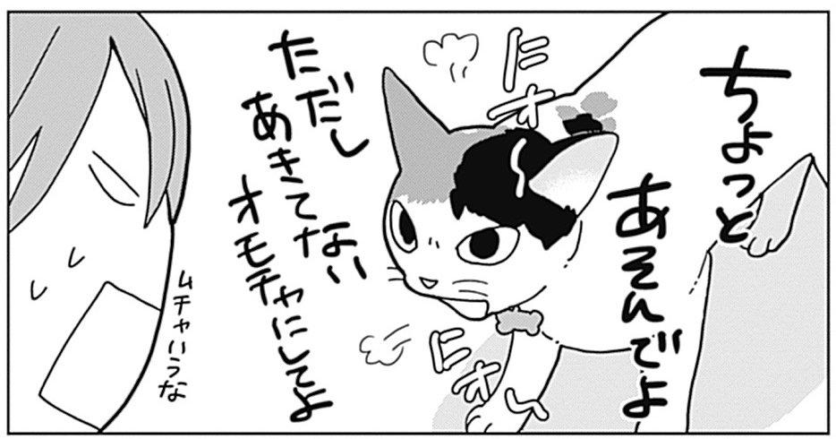 「ワカコ酒」で大ブレイク! 新久千映先生と猫ちゃんたちのエッセイコミック『ねこびたし』第42話が配信! 大柄なせんちゃん