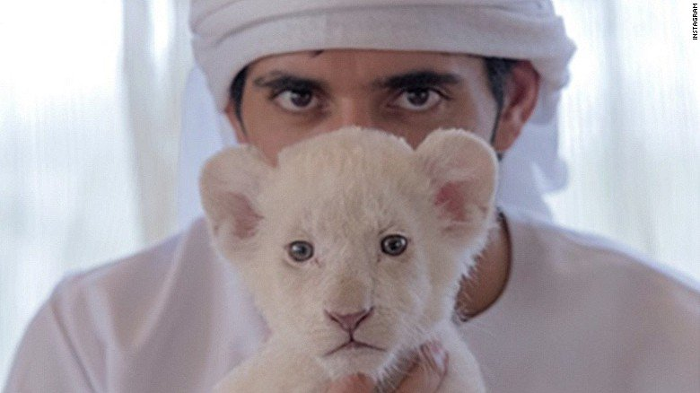 Cheetahs, tigers and lions are now banned as pets in the UAE https://t.co/th3MiVTN6N https://t.co/Ff4Ovf37dR