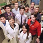 Wayne State cell research may lower risk of early birth