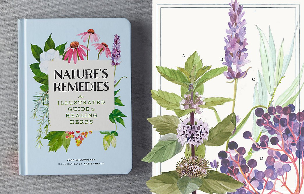 We're talking healing herbs with Nature's Remedies, today on the blog https://t.co/bJ2qDxs8Ub https://t.co/hEsXjSvsLR