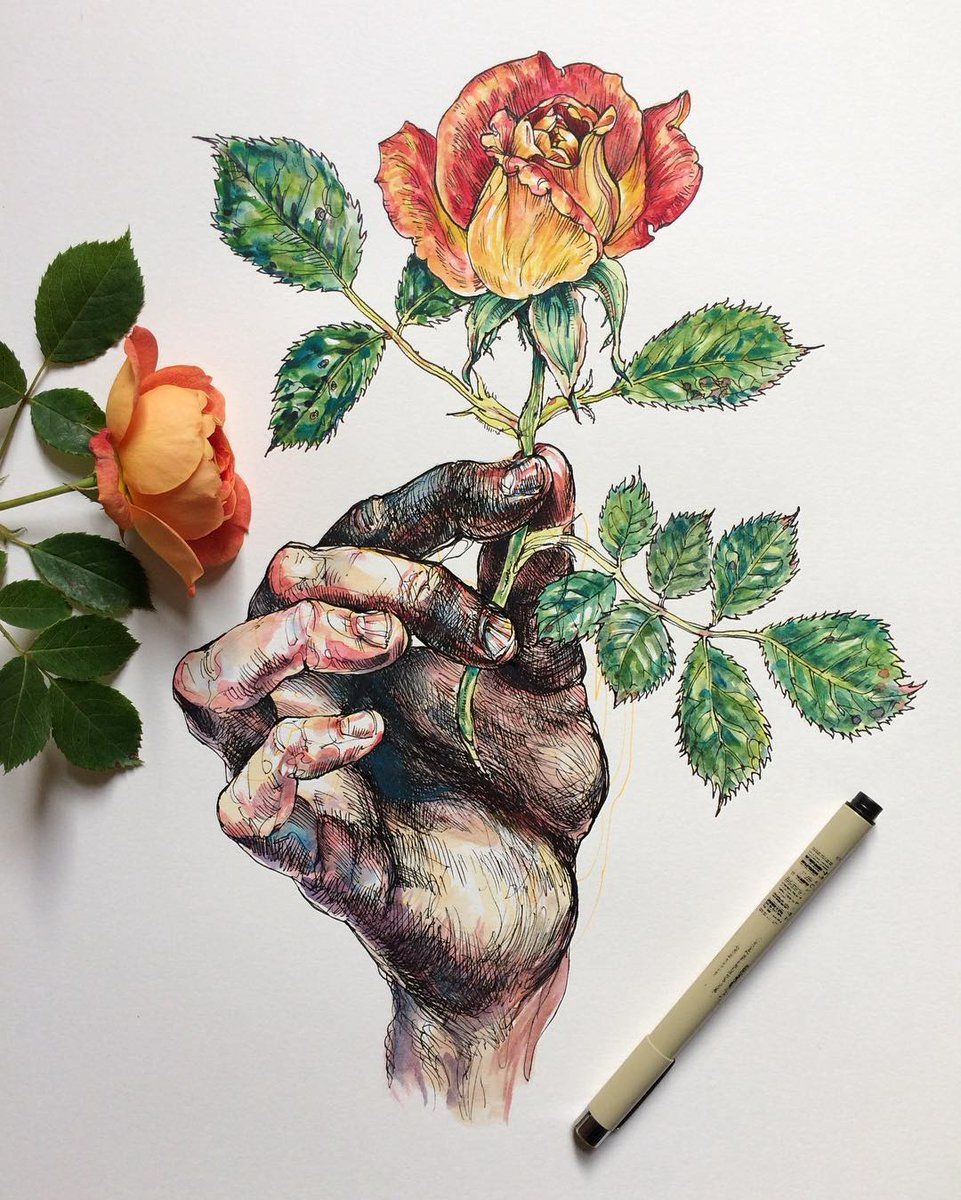 sensual drawings of gnarled hands touching nature