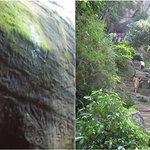 WATCH: This 360° tour of Kerala's Edakkal caves will mesmeriseyou