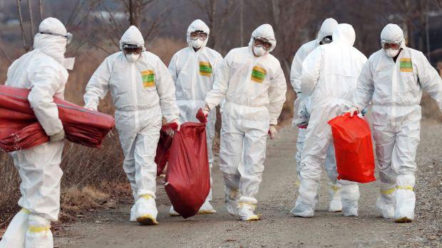 #china China confirms deadly human bird flu case in Guizhou province https://t.co/7Jw4VTDBTl https://t.co/rn20cckPiA