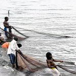 SPECIAL REPORT: How illegal fishing is killing factories in the Lake Zone