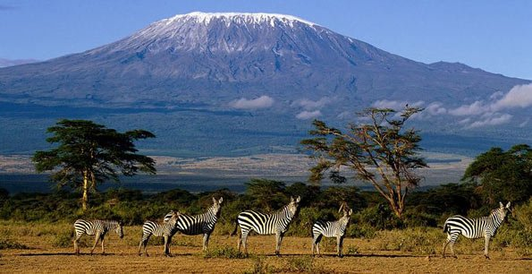 Tourist dies while climbing Mt Kili