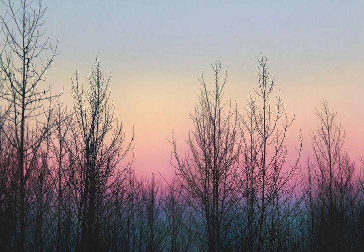 RT @hitRECord: A lovely winter sunrise captured by 'UrStyle' — https://t.co/GAR2Aozyiz https://t.co/xXtExv41QK