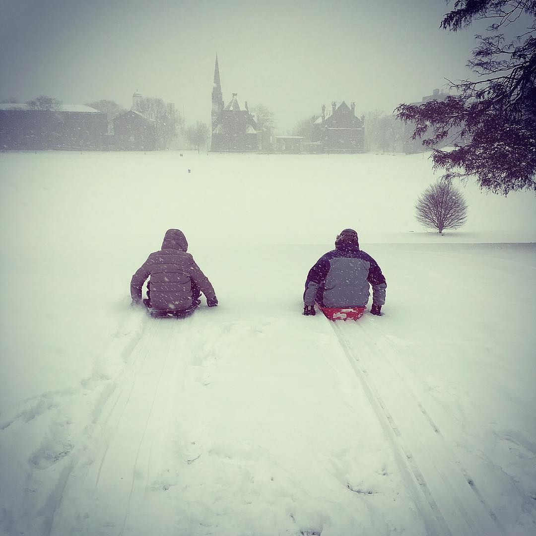 test Twitter Media - RT @wesleyan_u: Who loves sledding down Foss Hill after a snowstorm? Thanks for the fun shot @RobinsonLab! https://t.co/UJnrqO61j3