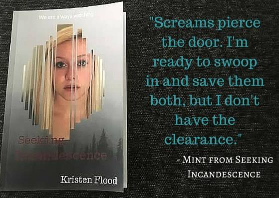Book giveaway for Seeking Incandescence by Kristen Flood Jan 06-Jan 31, 2017