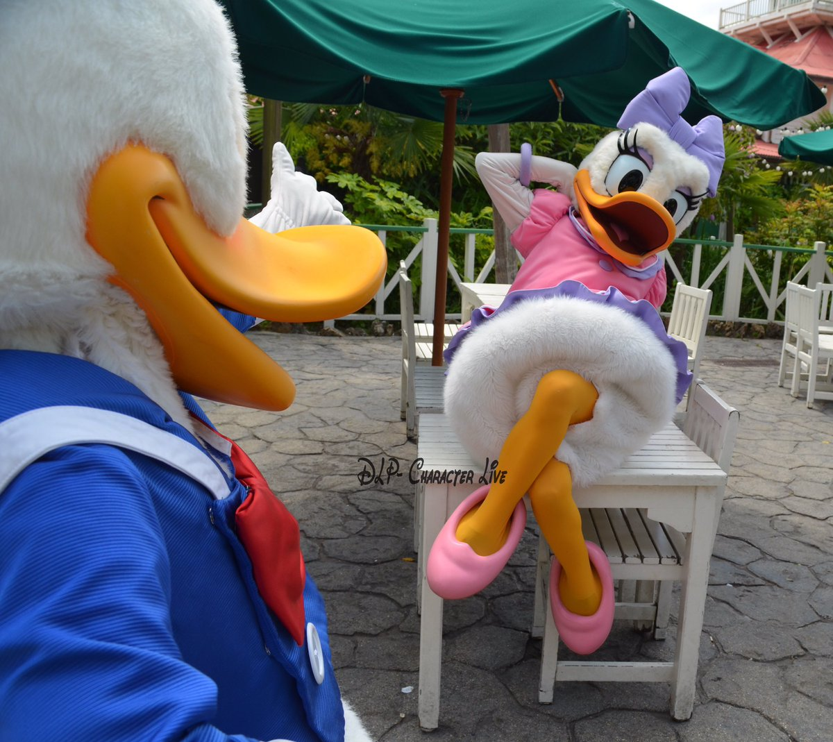 Happy80thDaisy, disneylandparis, DLP, Disney