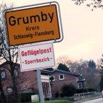 Germany culls 48,000 turkeys after more bird flu found on farms