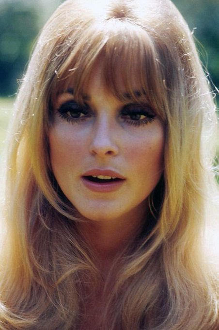 Happy bday sharon tate, rip you beautiful soul