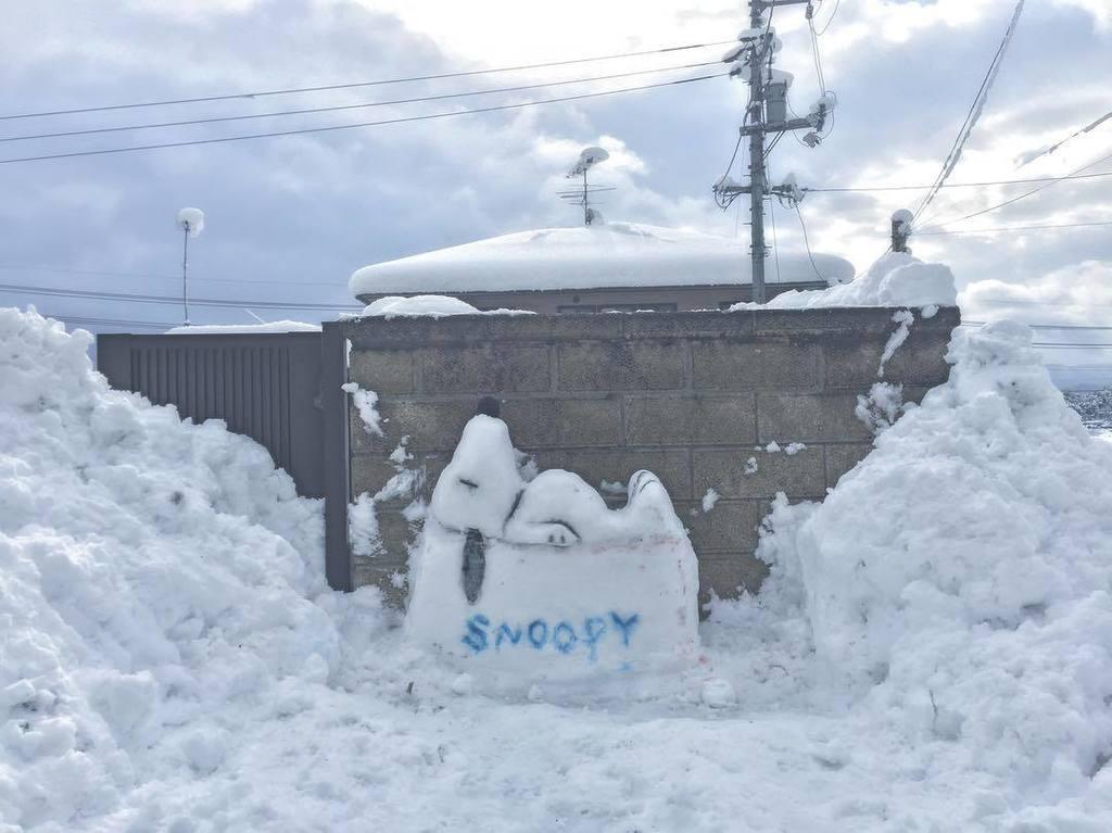 ..たっちゃんとオブジェ作成( ・ ´`(●)頑張ったんだけどなー、クオリティ低っ(笑).#雪がふったけん  #作るしか