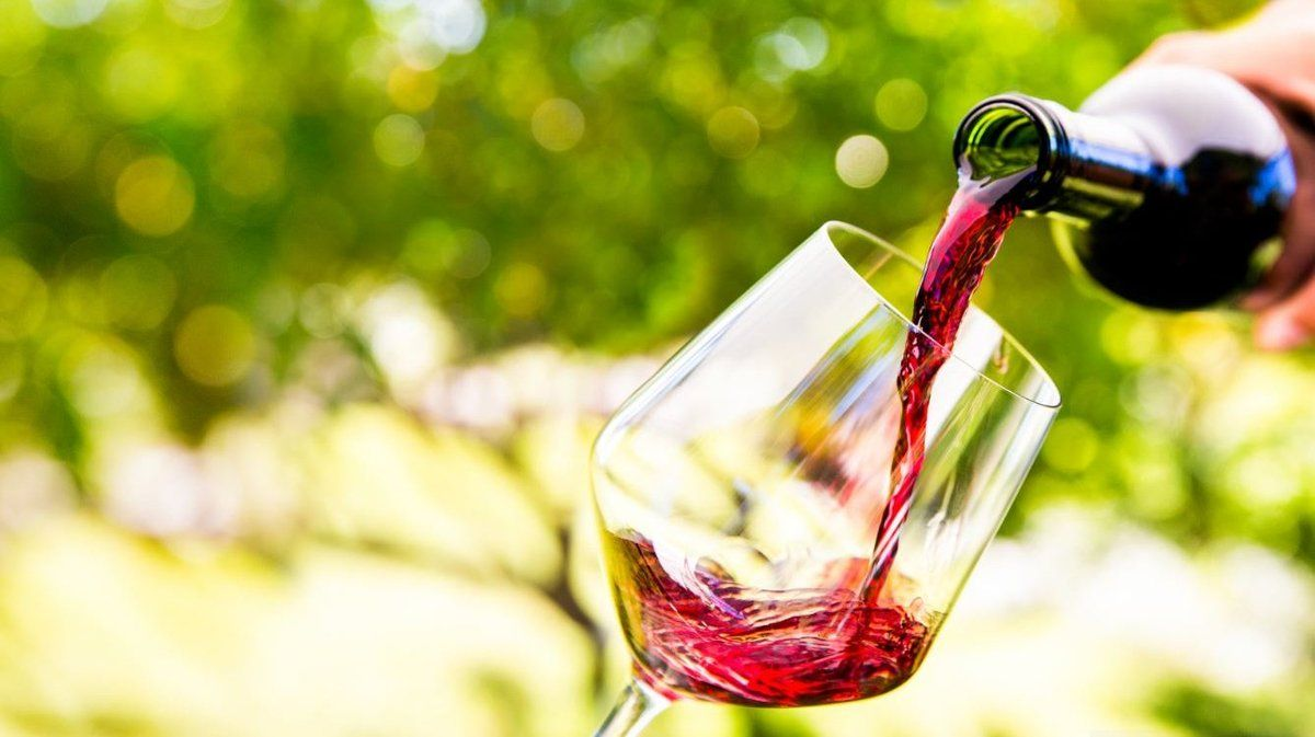The cheap wine hack that could save you bundles of cash https://t.co/xyNQacY1C2