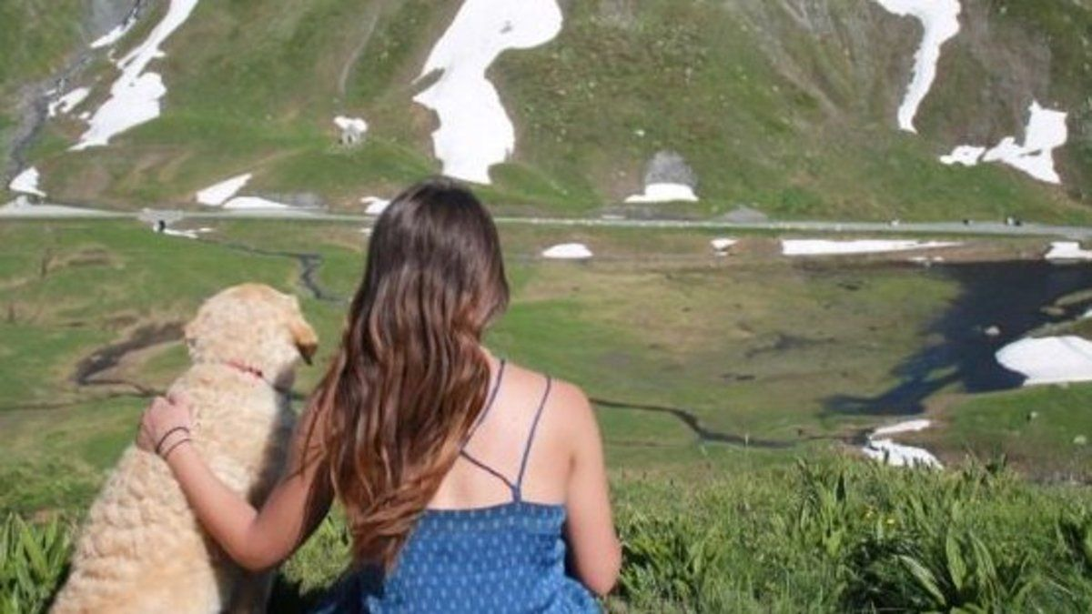 Meet the woman and her dog travelling the world in a van https://t.co/snplEnKbfS