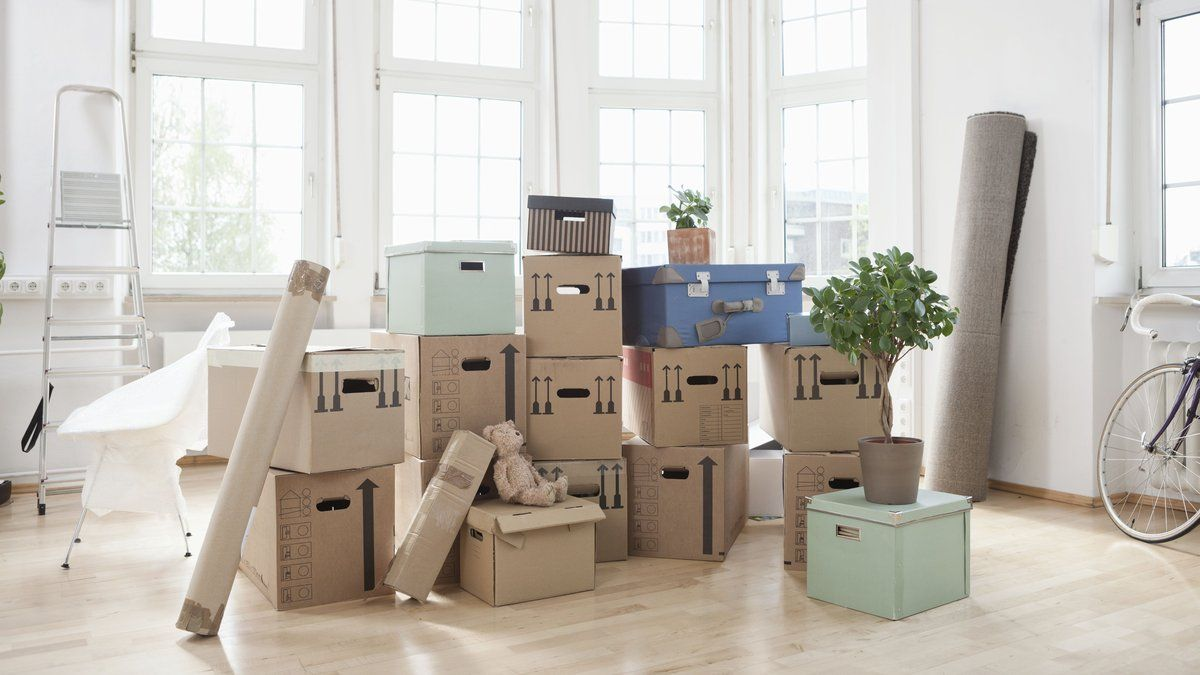 """""""Moving house is a living breathing hell"""" Lucy Mangan on how to survive a house move https://t.co/WRhJ6SHcNX"""