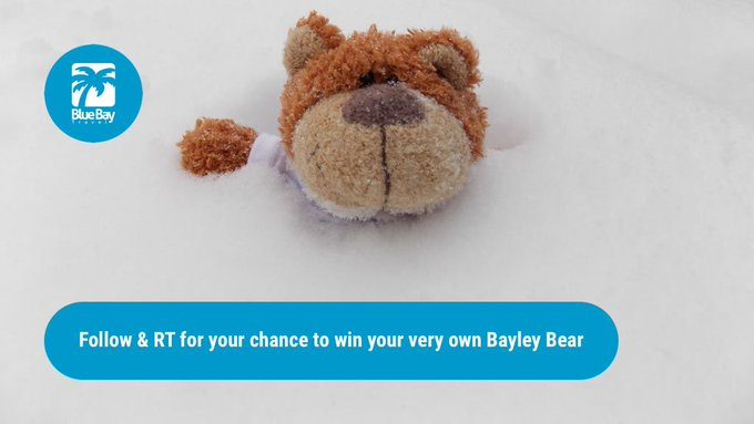 Snow need to worry, you can win a Bayley! Just FLW+//