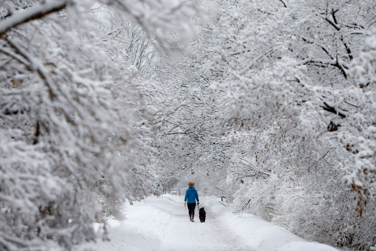 Canadians, rejoice: Climatologist says winter is halfway done