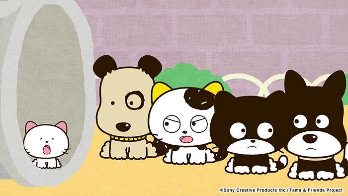 アニメ タマ&フレンズ~うちのタマ知りませんか?~ 今日のお話は「ゴンと子猫」公園に迷子の子猫が…。どうする?ゴン? 7