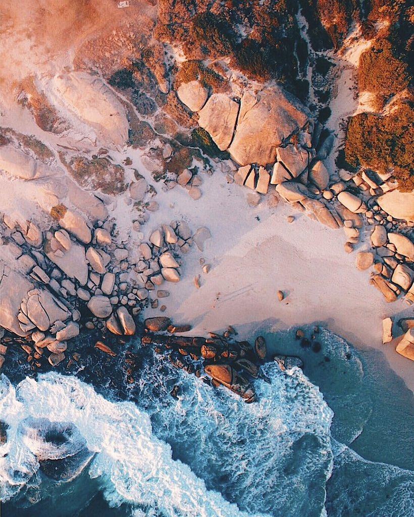 rosetta stone dcouvrez le monde de lamour au cape
