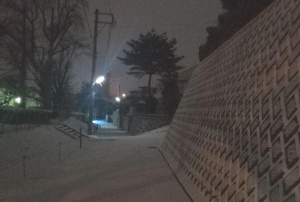 「未確認で進行形」の聖地の現在の景色雪が降っていい感じのはず!とか思って撮ってきたけど夜だったのでよく見えない (_□_