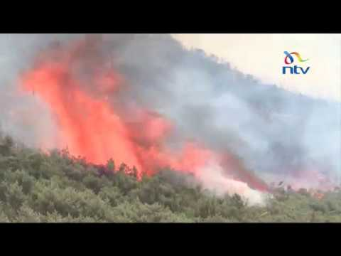 6,000 hectares of moorlands destroyed by wildfire