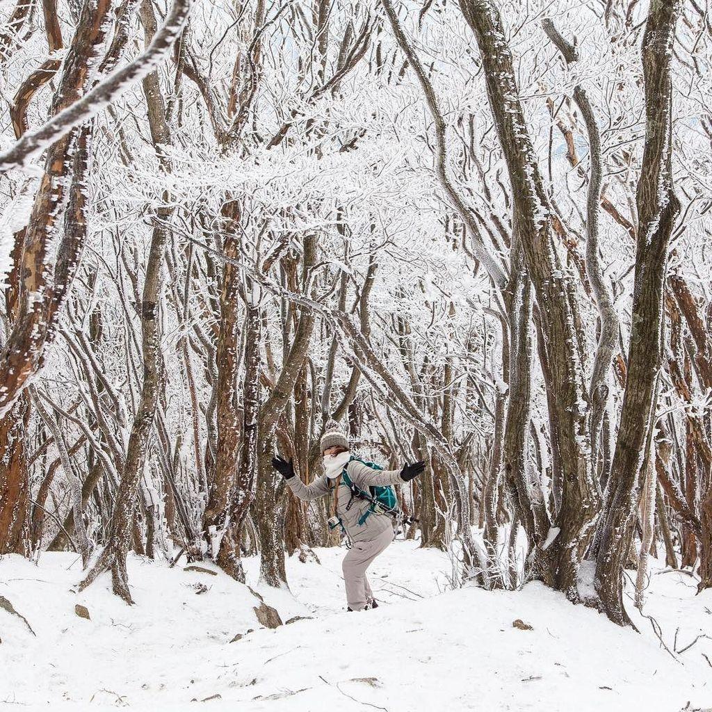 雪山楽しかったみたいで、ご機嫌うるわしい写真がいっぱい。かわいい。うれしい。#おくさま #高見山 #水曜登山部 #むひょ