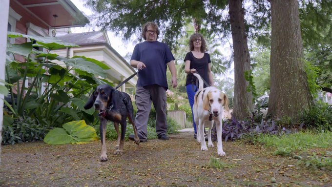 We're thrilled to see Loretta and Holler thriving in their new home! https://t.co/zj7CbgfnHm #PitBullsandParolees https://t.co/CR2I5vX0nv
