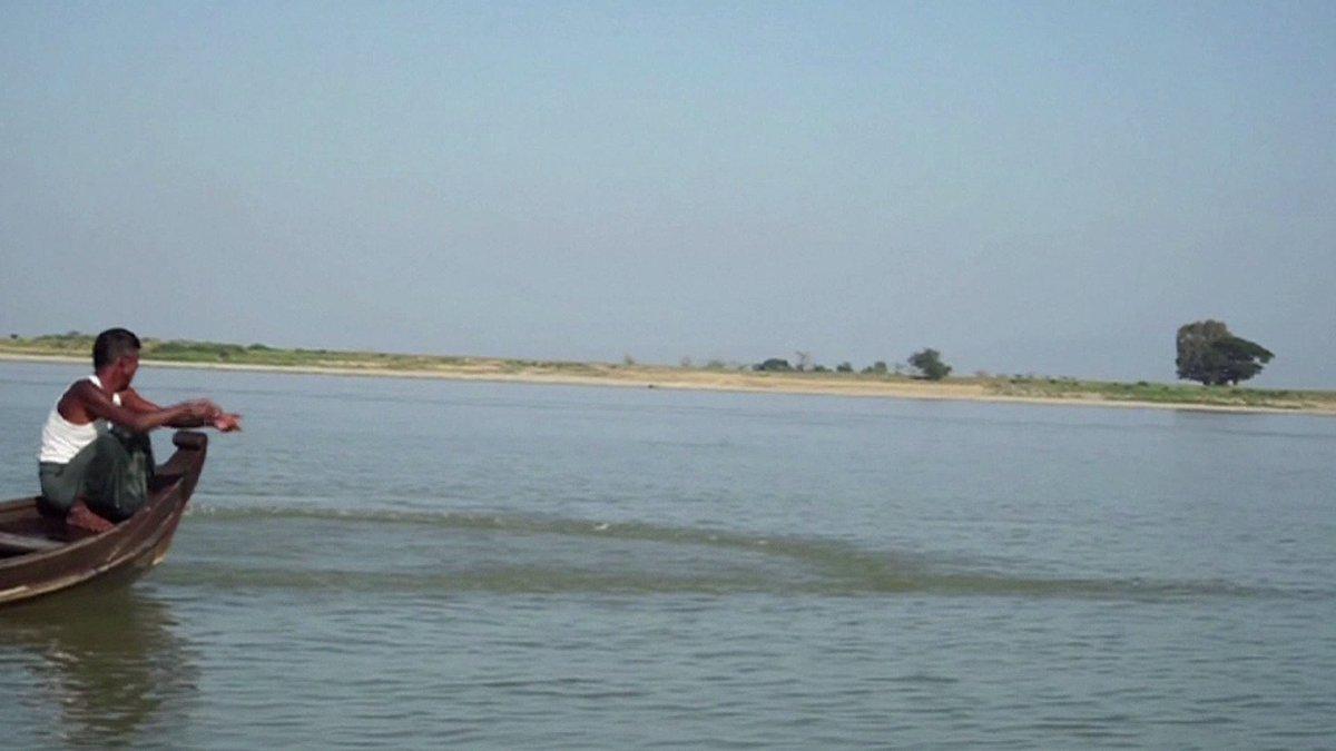 En Birmanie, les dauphins de l'Irrawaddy menacés d'extinction #AFP