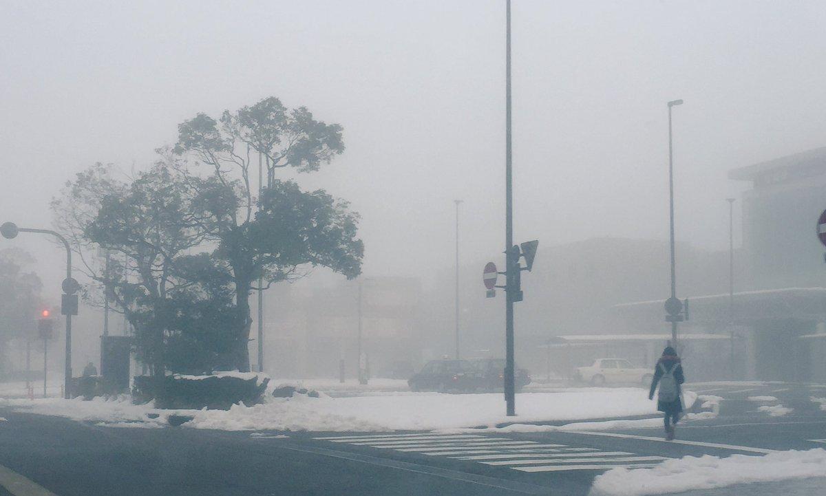 霧が凄すぎてサイレントヒル感ある https://t.co/MwLr0V1M9Z