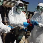 Government takes fresh samples from Masaka Avian Flu affected areas