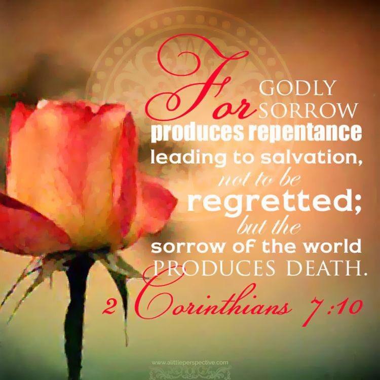 Ⅱコリント7:10神のみこころに添った悲しみは、悔いのない、救いに至る悔い改めを生じさせますが、世の悲しみは死をもたらし