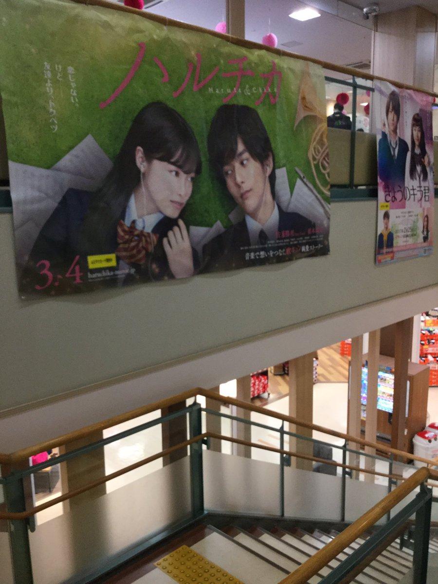 熊本住み!!セクガルさん!!勝利君がいました😊 #熊本Zone #ハルチカ