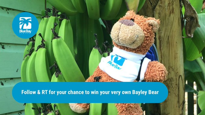 Go bananas, it's Friday and you can win a Bayley! Just FLW+RT FreebieFriday FridayFeeling