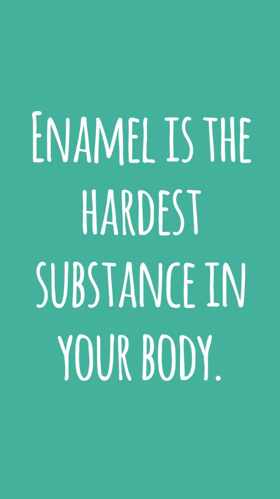 Enamel is the hardest substance in your body. #didyouknow https://t.co/djxeuh0s3A https://t.co/SX5ewwEUtj