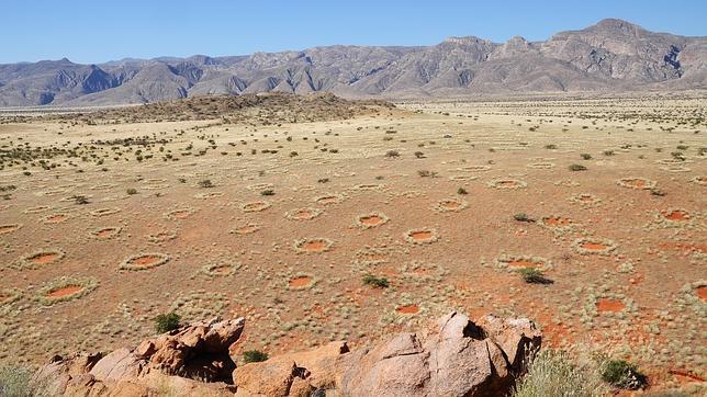 """Una nueva hipótesis explica el misterio de los """"círculos de hadas"""" de Namibia"""