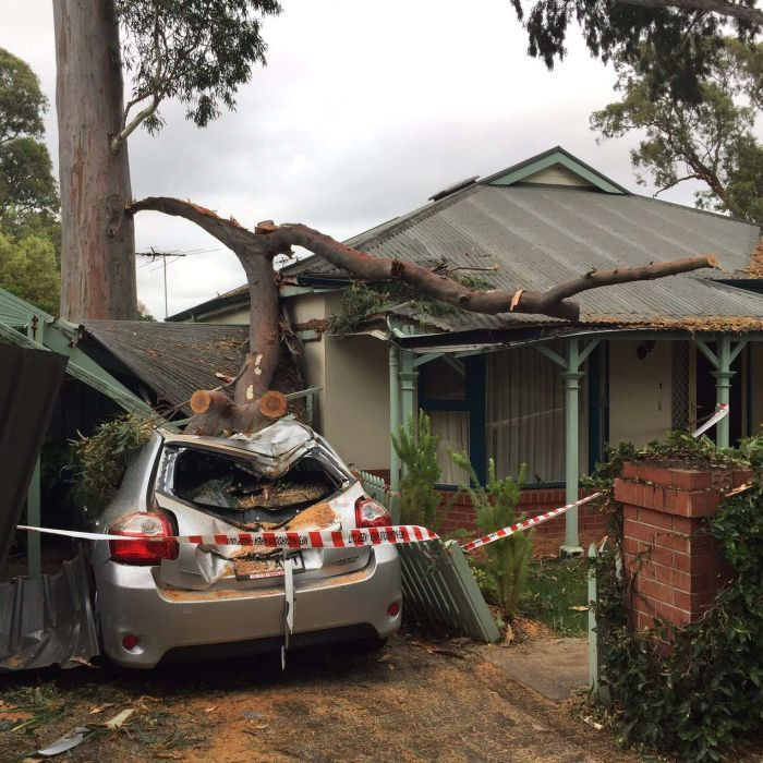 SA weather: Thousands without power after wild storms cross state