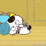 アニメ「タマ&フレンズ うちのタマ知りませんか?」TOKYO MXで明日朝7:00から放送するエピソードは「タマと毛糸だ