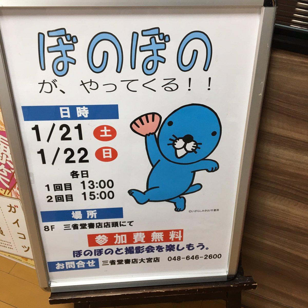 いよいよ明日!! ぼのぼのちゃんが三省堂書店大宮店に遊びに来てくれます!! 一緒にお写真撮りませんか?