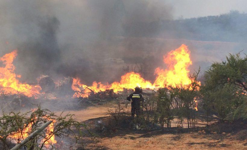 Conaf Incendios forestales activos en el país consumen más de 35 mil hectáreas