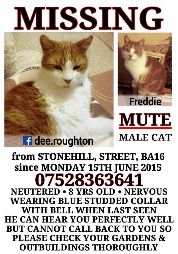 plees elp to find freddy https://t.co/a0FCptmZ51 contact @DeniseRoughton