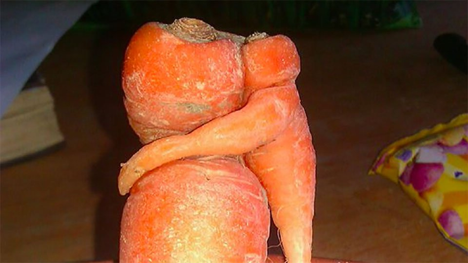 It's #inauguration day, so here's a photo of 2 carrots hugging