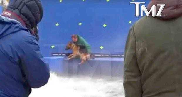 Pré-estreia de 'Quatro Vidas de um Cachorro' é cancelada nos EUA após divulgação de vídeo https://t.co/ZZmDs5JXWZ