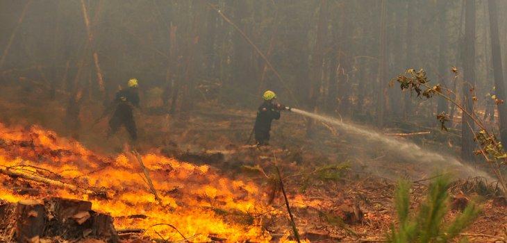 Declaran Alerta Temprana Preventiva en Los Ríos por incendios forestales