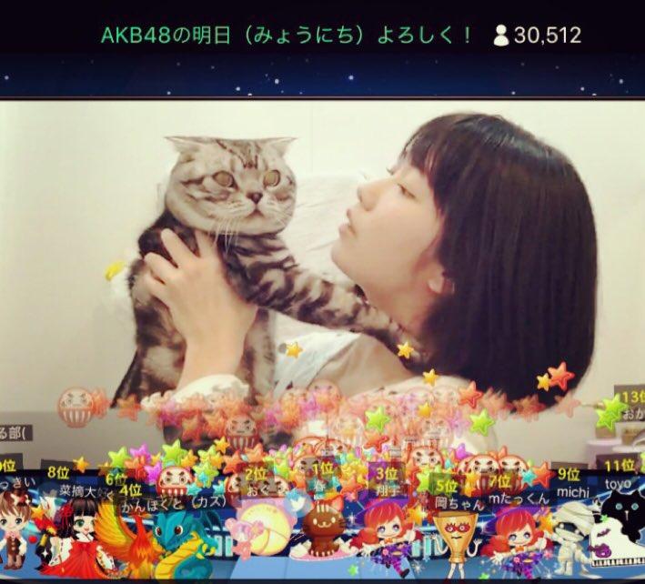 AKB48の明日(みょうにち)よろしく 月曜日はみーおんです✨さややから送られてきたー! ビスに嫌がられている。。