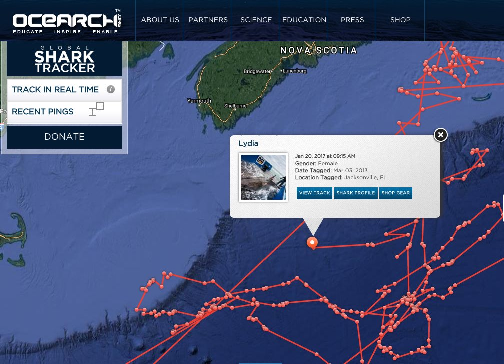 RT @RockStarLydia: Takes a licking but keeps on pinging... 17 pings in 48 hours! 🌊⚡🎸 https://t.co/aKNcU09zBD https://t.co/M5BN5Fid4o