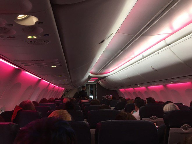 Southwest Airlines Lights Up Flight to D.C. Pink for Women's March