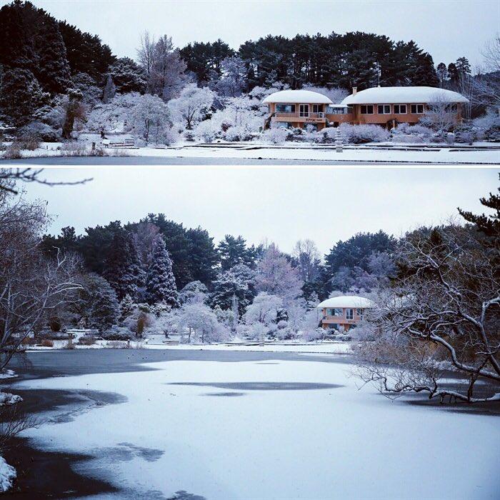[#눈세상] 눈 내린 천리포수목원  ★ 자세한 내용 보기 https://t.co/pw3s3mG2bl ★ 여러분의 이야기를 들려주세요 https://t.co/8hmuHEZfJh  #모이 #대한 #대설 #눈 #천리포수목원  #풍경