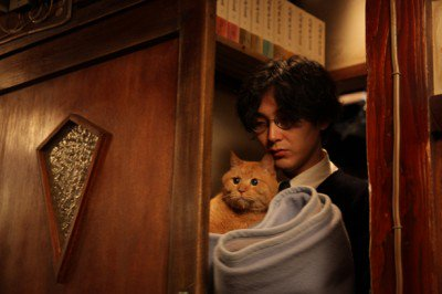 映画「舟を編む」に出てくる猫🐱、トラさんが可愛すぎる!胸キュン♡原作大好きなのですが、映画も素晴らしいです。#舟を編む#