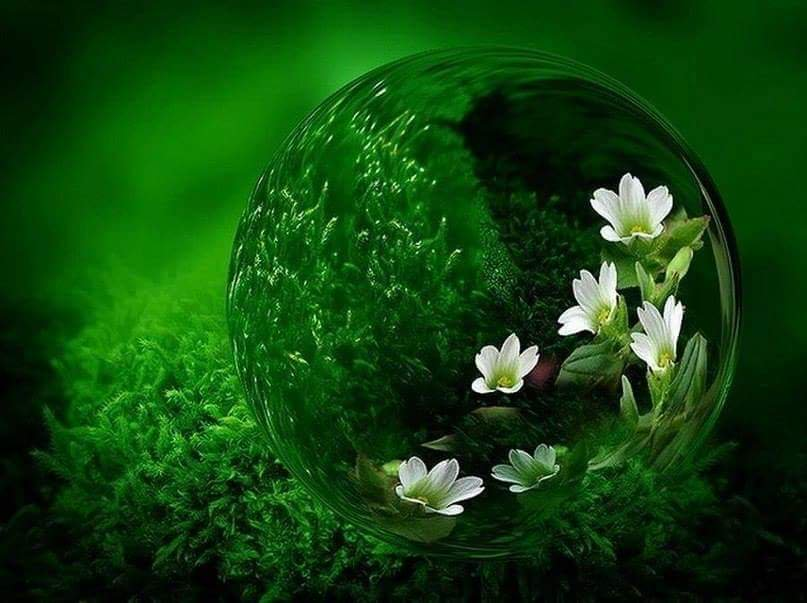 RT @dct_ihjc: Your environment is a kaleidoscope reflecting your heart. https://t.co/J7nKG3e5MG