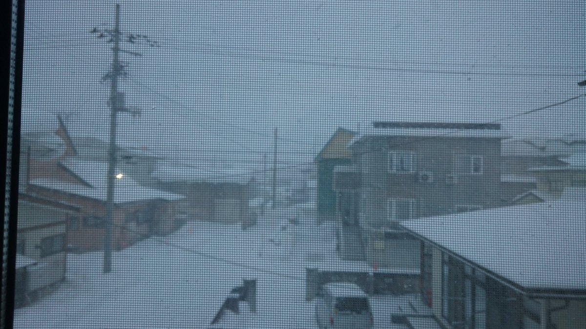 めっちゃ吹雪いてんだけど。。。最悪、、、だがしかし!吹雪ちゃんかわいいから喜んで外に行くぜ!!\( 'ω')/ウオアアア